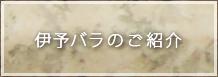 伊予バラのご紹介
