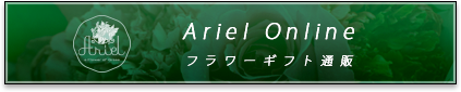 Ariel Online フラワーギフト通販